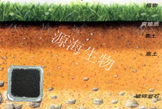 提高土壤的结构性:土壤有机质的主要部分是