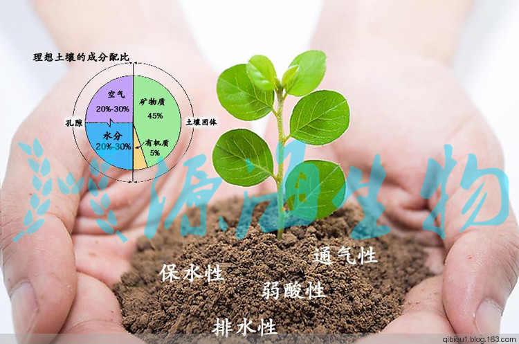 有机蔬菜的有机肥使用方法