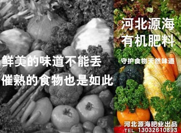 有机肥对农作物的增产作用研究