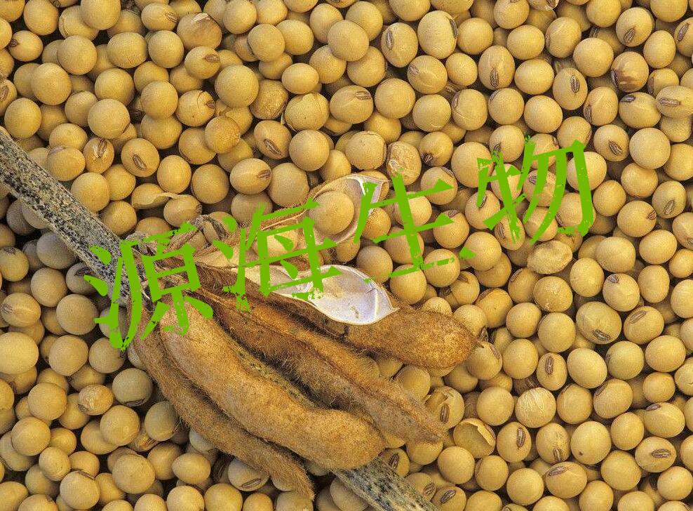 大豆有机肥的施用技术