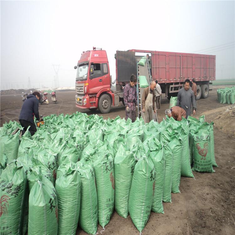 土壤施有机肥的方式