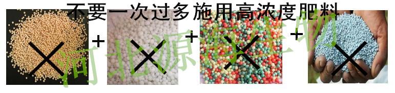 """春耕用肥触碰""""禁忌""""会变成魔鬼!(二)"""